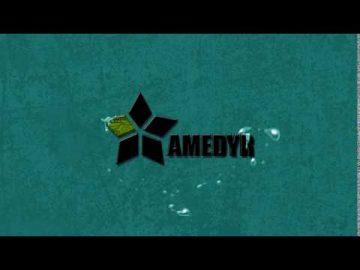 Logo Animado - Amedyr